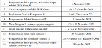 Seleksi Kompetensi PPPK Tahap 2: Jadwal, Alur, Passing Grade
